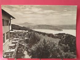 Visuel Pas Très Courant - Suisse - Zugerberg - Hotel Bahnhofrestaurant - 1960 - Très Bon état - Scans Recto Verso - ZG Zoug