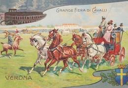 Eventi - Manifestazioni -  Verona 1999 - 101^ Fieracavalli - - Manifestazioni