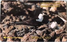 ASCENCION - Phonecard  -  Cable § Wireless  - Bird Wideawake Tern  -  £25 - Ascension (Insel)