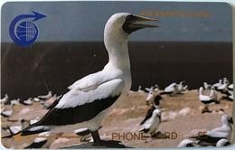 ASCENCION - Phonecard  -  Cable § Wireless  - Bird Sula  -  £5 - Ascension