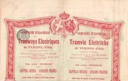 Titre Ancien - Compagnie Italo-Belge Des Tramways Electriques De Vérone - Sté Anonyme  - Titre De 1905 -N° 04448 - Chemin De Fer & Tramway