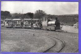 Carte Postale 83. Fréjus  Le Petit Train  Très Beau Plan - Frejus