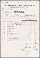 Zoologische Station Büsum Schleswig-Holstein Rechnung Leiter Seb. Müllegger 1936 - Allemagne