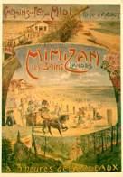 Publicite - Chemins Du Midi - Mimizan Les Bains ( Landes ) à 3 Heures De Bordeaux - Vintage - Illustration - Carte Neuve - Publicidad