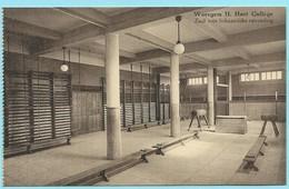 0842 - BELGIE - WAREGEM - H. HARTCOLLEGE - GYM - Waregem