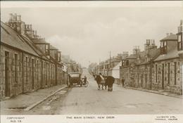 Ecosse (Scotland) - New Deer - The Main Street - 2 Cows In The Street (2 Vaches Dans La Rue) - Schottland