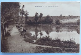 C. P. A. : Belgique : WATERMAEL : Les Etangs De Pêche, Pêcheurs - Watermael-Boitsfort - Watermaal-Bosvoorde