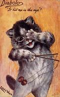 CHAT ATTITUDE HUMAINE Avec DIABOLO / CAT With DIABOLO - ILLUSTRATION SIGNÉE / ARTIST SIGNED : LOUIS WAIN ~ 1905 (ae079) - Chats