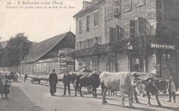 SALINS-les-BAINS (Jura): Transport Des Grands Sapins De La Forêt De La Joux (attelage De Boeufs) - Other Municipalities