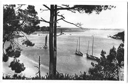 ! - France - Vannes (environs) - Golfe Du Morhiban - Arradon - Le Goulet De Conleau Et La Pointe De Langle - 2 Scans - Vannes