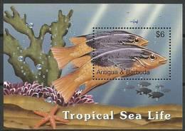 Antigua And Barbuda 2005 Mi Bl 605 MNH ( ZS2 ANBbl605dav37A ) - Peces