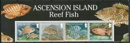 Ascension Island 2010 Mi 1098-1101 MNH ( ZS6 ASImarvie1098-1101dav37A ) - Peces
