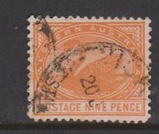 Australia-Western Australia SG 145 1905-12 Nine Pence Orange,perf 12,used - 1854-1912 Western Australia