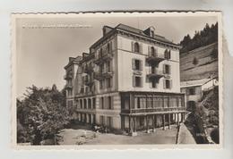 LOT 23022083 CPSM ANNIVIERS (Suisse-Valais) - SAINT LUC : Hôtel Du Cervin Famille M. GARD Propriétaire - VS Wallis