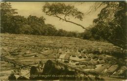 BELIZE / BRITISH HONDURAS - BELIZE RIVER - 1920s (BG7830) - Autres