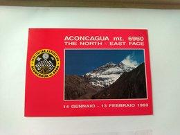 SPEDIZIONE ACONCAGUA MT 6960 - ITALIA EXPEDITION 1993 - AUTOGRAFI - F.TO GRANDE - VIAGGIATA - Ohne Zuordnung
