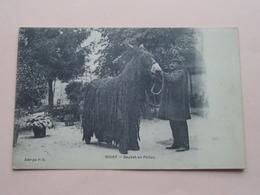 NIORT Baudet En Poitou ( Edit V.G. ) Anno 19?? ( Zie Foto Details ) ! - Aquitaine