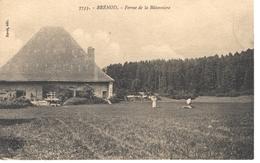 Brenod Batonniere - France