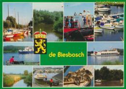 De Biesbosch [AA48-1.595 - Niederlande