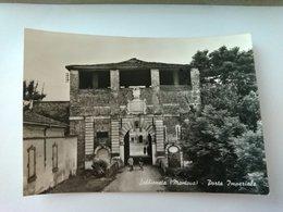 SABBIONETA - MANTOVA - PORTA IMPERIALE - ANIMATA - F.TO GRANDE - NON VIAGGIATA - Mantova