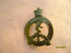 Pin Armée éthiopienne, époque De Haile Selassie (service De Santé) Grand 40 Mm - Medicina