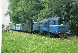 Diesel Locomotive No.TU2 098 Of Borsavalley Railway (UZ - Ukrainian Railways) In 2006  -  CPM - Trains