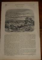 Magasin Pittoresque. Livraison N°39. L'Ile De La Tortue.Un Boucanier. Trouvaille Sur La Grève. 1849 - Books, Magazines, Comics