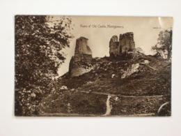 Montgomery : Old Castel - Montgomeryshire