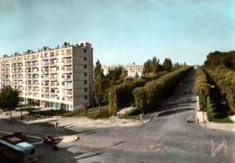 CPSM - SCEAUX - ALLEE D'HONNEUR Du CHATEAU ... (immeubles) - Edition Raymon - Sceaux