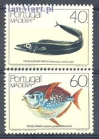 Madeira 1985 Mi 98-99 MNH ( ZE1 MDR98-99 ) - Peces