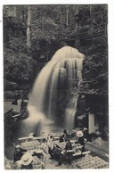 3956 - AMSELFALL AMSEL FALL SACHSISCHE SCHWEIZ 1920 ANIMATA - Svizzera