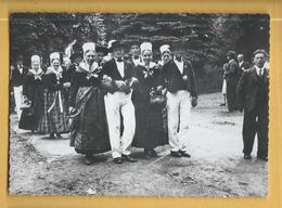 C.P.M. ALSACE - Costumes De NIEDERLAUTERBACH - Costumes