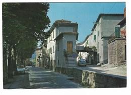 3974 - SALUTIO AREZZO INGRESSO AL PAESE 1960 CIRCA - Italia