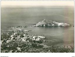 20 . N° 40587 . Cap Corse.le Port Et L Ile De Centuri. Cpsm  15 X 10.5 Cm - France