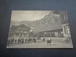 Suisse ( 378 )  Switserland  Svizzera  Sweiz  Zwitserland  :   Zermatt   Départ Des Chèvres - VS Valais