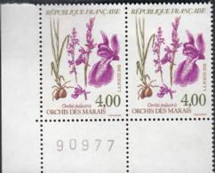 Orchis Des Marais - Nuovi