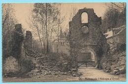 0871 - BELGIE - ORVAL - RUINES - EGLISE SAINTE MARGUERITE - Florenville