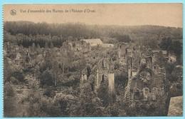 0872 - BELGIE - ORVAL - RUINES - VUE GENERALE - Florenville