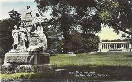 *CPA - 34 - MONTPELLIER - Le Parc De L'Esplanade - Montpellier