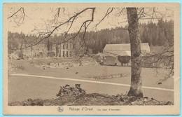 0874 - BELGIE - ORVAL - RUINES - LA COUR D'HONNEUR - Florenville