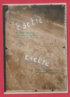 Guerre 14-18 - Vue Aérienne Originale De De Panne / La Panne ... 1918 ( Voir Verso ) - Oorlog 1914-18