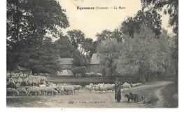 80 EQUENNES LA MARE TROUPEAU DE MOUTONS ET SON BERGER 1907 CPA 2 SCANS - France