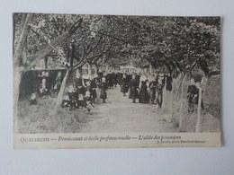 1907 CP Animée Quatrecht Pensionnat Et Ecole Professionnelle L' Allée Des Pommiers Wetteren J. Jacobs - Wetteren