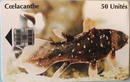 COMORES  -  Chip Card  -  SNPT Des Comores  - Coelecanthe -  SC7  - 50 Unités - Comore