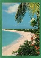 Saint Martin (Guadeloupe) - Long Beach St Martin CPM Année 1981  Edit Hachette  Antilles - Saint Martin