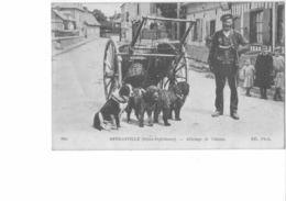 76 - ATTELAGE DE CHIENS -  RARE -  OFFRANVILLE - Offranville