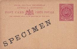 Carte Entier Postal Specimen Antigua Antigoa - Antigua Et Barbuda (1981-...)