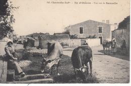 17 Ile D'Oléron Une Rue De Sauzelle - Ile D'Oléron