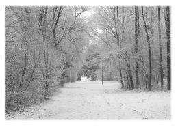 ANNECY-LE-VIEUX - Parc Des Raisses En Hiver - Annecy-le-Vieux