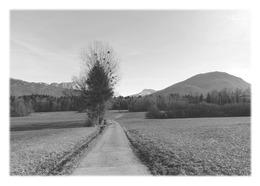 ANNECY-LE-VIEUX - Parc Des Glaisins - Annecy-le-Vieux